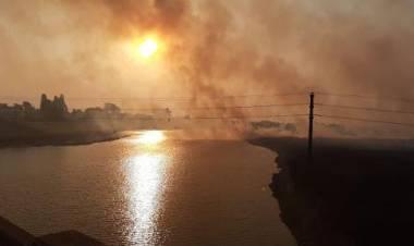 """Diputado Sergio Basile: """"El daño al medio ambiente es más grave de lo que creemos"""""""