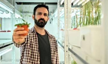 """Federico Ariel, investigador del Instituto de Agrobiotecnología, que recibió el """"Premio Hermann Burmeister"""" en la especialidad Biología Celular y Genética"""