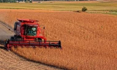 Ignacio Mantarás y la visión de Carsfe sobre el panorama agropecuario nacional