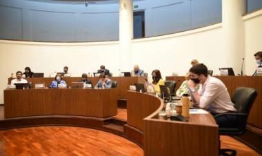 El Concejo aprobó el paquete de medidas de apoyo económico para distintos sectores