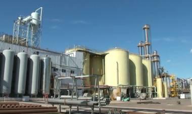 Juan Facciano manifestó su preocupación por la paralización de la producción de biodiesel en el país