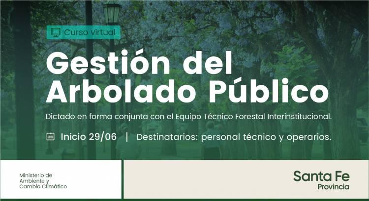 La provincia lanza un curso de Gestión del Arbolado Público